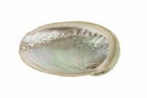 GRUNDAUSSTATTUNG - Räuchern mit Weißer Salbei Räucherbündel 90 g